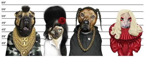 Celebrities As Dogs